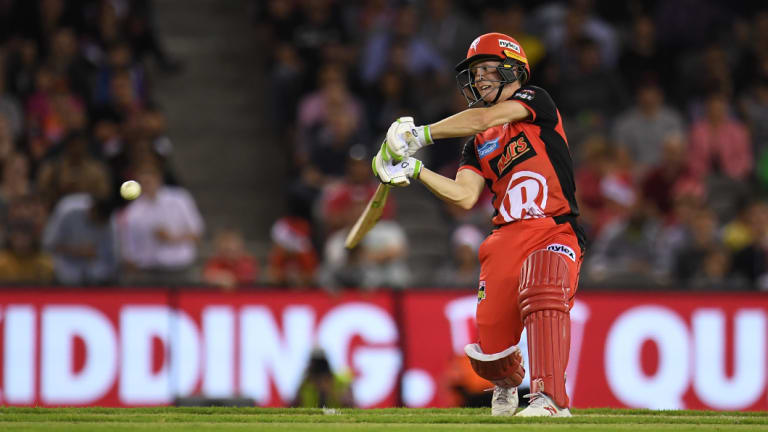 Sam Harper of the Renegades at the crease.
