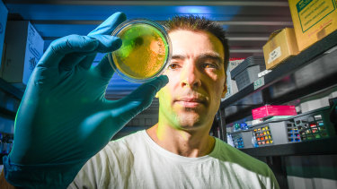 Andrew Gray in his shipping container genetic research lab in Brunswick.
