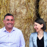 Why the emergence of Berejiklian and Barilaro is a good thing