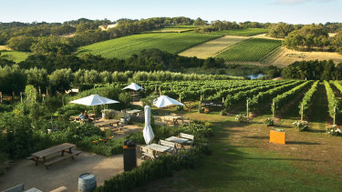 Victoria's wineries, like Montalto Winery & Olive Grove at Shoreham on the Mornington Peninsula, could escape the worst of the downturn in tourism.