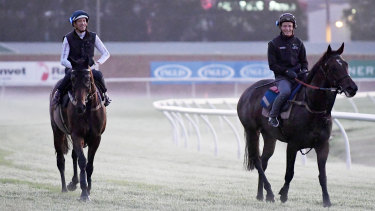 Calm before the storm: Hugh Bowman on Winx and James McDonald on Unforgotten during trackwork at Rosehill this week.