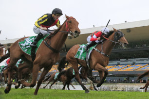 Tuscan Light (black cap), pictured   running second to Tavion Prince in a Highway at Rosehill, is  selected in race 3.