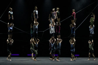 The Pulse was to be part of Sydney Festival's 2021 program.