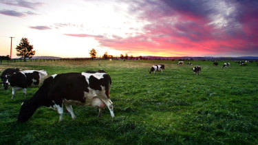 Western Victoria is farming country.