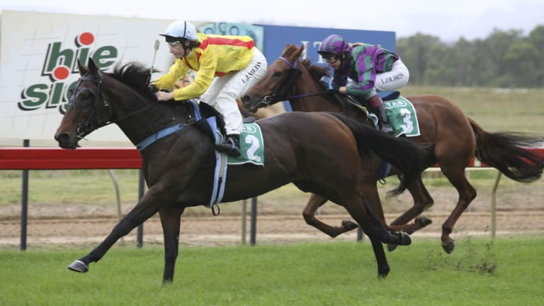 NSW Racing eyes turn to Cessnock Racecourse on Thursday.