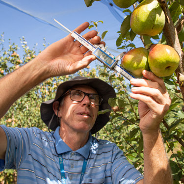 Researcher Ian Goodwin is part of a team that develops new technologies at the Victorian state government's Tatura SmartFarm.