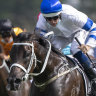 Shaquero ticks off Magic Millions box for Waller, now for the Slipper