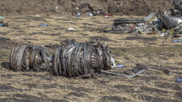 Aeroplane parts lie on the ground at the scene of the Ethiopian Airlines crash.