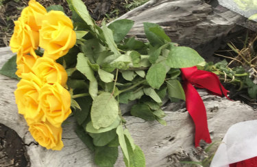 The yellow roses Annette Graham placed in Royal Park on Monday morning.