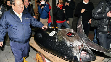 Kiyomura Corp owner Kiyoshi Kimura, left, with the bluefin tuna for which he made a wining bid at the annual New Year auction, in Tokyo on Saturday.