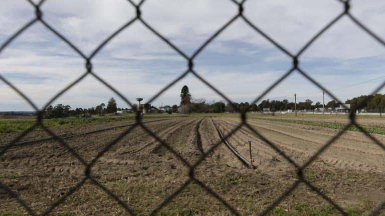 Farmland bordering the RAAF base at Richmond.