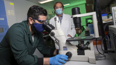 Harry Al-Wassiti (left)  and Colin Pouton are working on a COVID-19 vaccine at Monash University.