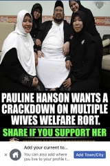 SHF general manager Ross Muir shared a post about Pauline Hanson on his Facebook page.