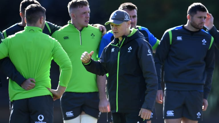Rescue bid: Joe Schmidt made eight changes to the Ireland line up for the second Test