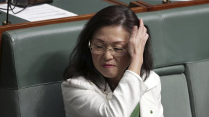 Liberal MP Gladys Liu in Parliament House on Wednesday.