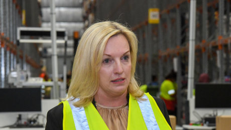 """Australia Post CEO Christine Holgate: """"We deliver medicine to home for pharmacies including Chemist Warehouse, it's like a Suez Canal coming down a drainpipe."""""""