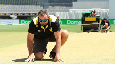 Not easy to transport: Head curator Brett Sipthorpe inspects the WACA pitch.