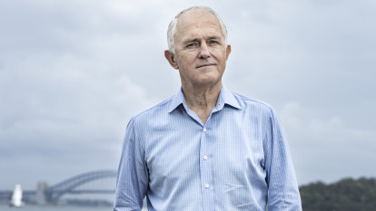 Turnbull calls for halt on new coal mines, inquiry on rehabilitation funds