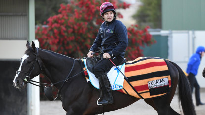Yucatan rides again: Cup favourite to race under original name