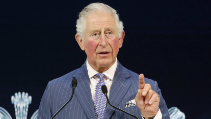 We need revolutionary action to save the planet: full transcript of Prince Charles' Davos speech