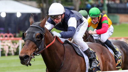 Homesman set for Mackinnon Stakes after Crystal Mile win