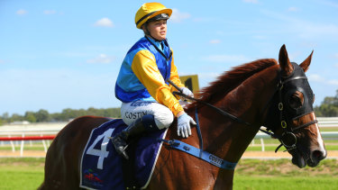 Hope: Captain Courageous won't be without support in race six at Hawkesbury on Tuesday.