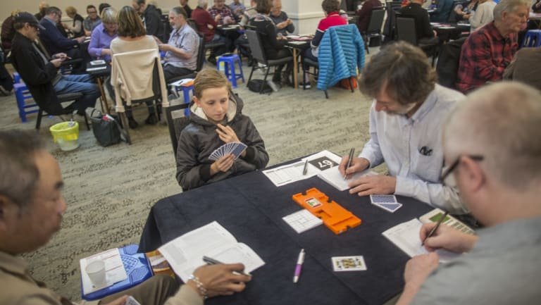 He's got the smarts: Taydon Gold, 9, was the youngest participant by far in the bridge national teams championship at a Queens Road hotel on Sunday.