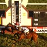 Race-by-race tips and preview for Grafton on Monday