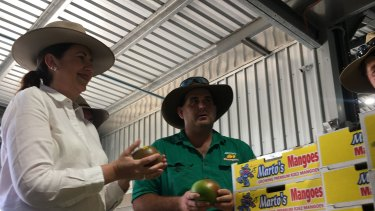Premier Annastacia Palaszczuk visited a mango farm in Bowen on Monday