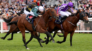 Determined finish: Merchant Navy, right, ridden by Ryan Moore wins the Diamond Jubilee Stakes at Royal Ascot.