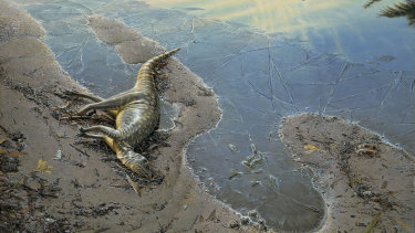 A study has shed light on the hypsilophodont dinosaur.