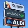 Dog Swamp
