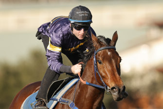 Master Of Wine, ridden in trackwork by Tommy Berry, is one of the leading hopes in Saturday's Turnbull Stakes.