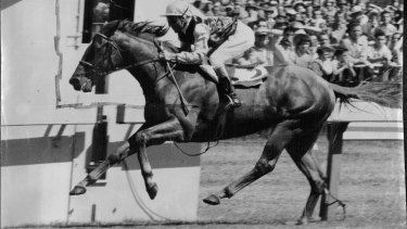 The flying Todman set a high standard when he won the inaugural Golden Slipper in 1957.