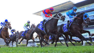 Tommy Berry and Mo'unga get the better of Verry Elleegant  in the Winx Stakes last month.