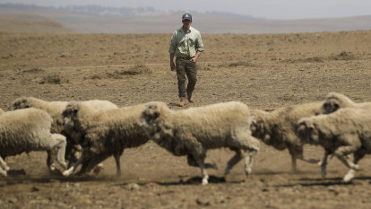 Australia's annual heat records may melt after hot and dry October