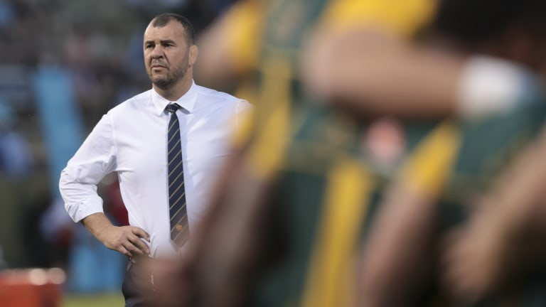 Spray: Wallabies coach Michael Cheika was seen giving the players a serve at half-time.