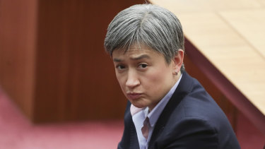 Penny Wong in the Senate late last year.