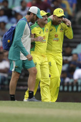 David Warner is helped from the field by David Beakley and Glenn Maxwell during the second ODI in November.