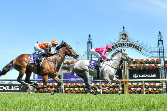 A small number has already been allowed back at the track but the VRC hopes for much larger numbers on New Year's Day.