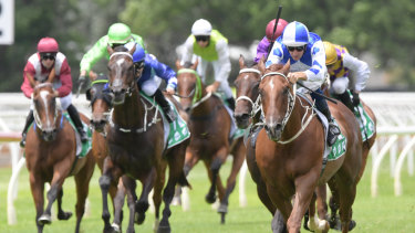 There are seven races on the cards at Warwick Farm today.