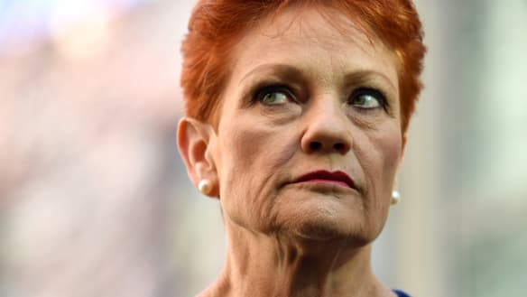 What One Nation got so badly wrong