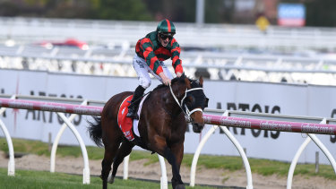 What next: The Autumn Sun waltzes away with the Caulfield Guineas on Saturday