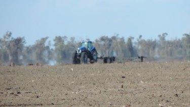 Loss of habitat: Land clearing near WalgettinOctober 2017.