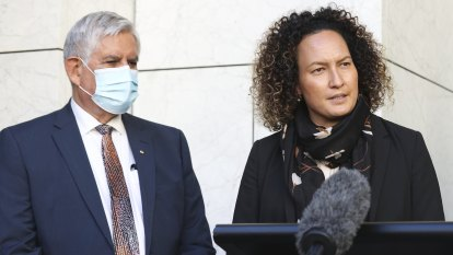 Stolen Generations redress must include descendants, Indigenous group says