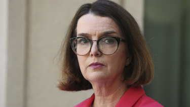 Social Services Minister Anne Ruston is the last in a long line of LNP MPs to hold the job.