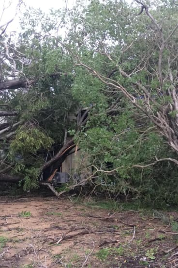 Tropical cyclone Nora brought trees down around this property in Kowanyama.