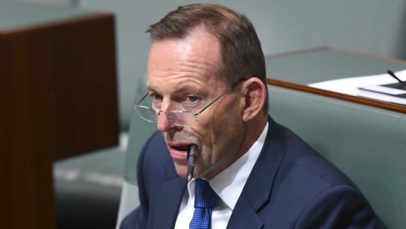 Tony Abbott set for the long-term as he cements his hold on seat