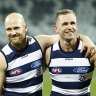 Cats pounce on Suns, Rowell in injury scare