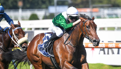 'Our time will come': Why Luke Price passed on his first Golden Slipper runner
